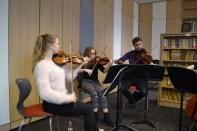 David Wigram of the Piatti Quartet coaching from the viola chair 5/12 © Hattie Rayfield