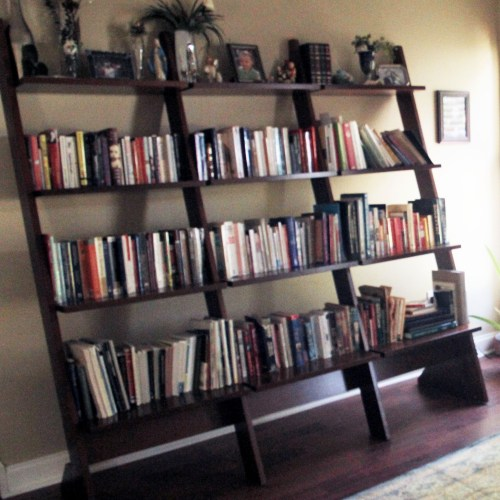 My Bookcase Before