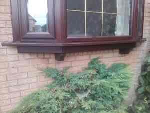 upvc window replacement Glasgow