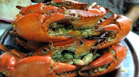 Crabbing at Kali Little Restaurant, Pandamaran, Port Klang