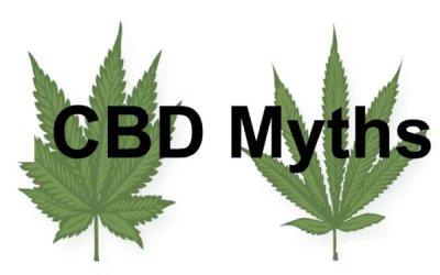 CBD Oil Myths – All Myths Busted And Reality Explained