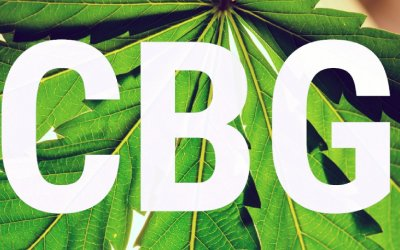 CBG – Complete Guide With Benefits, Where To Buy Hemp CBG Crystal Isolate Online