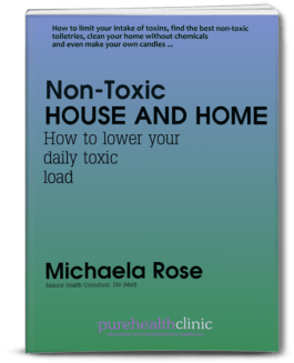 Non toxic house and home 3D