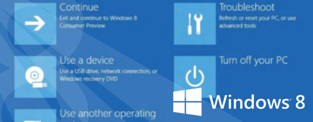 Boot options menu - Windows 8