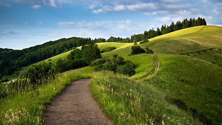 Path leading through the rolling hills, Kaiserstuhl, Baden-Würt
