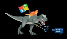 Windows 10 ninja cat riding a T-Rex