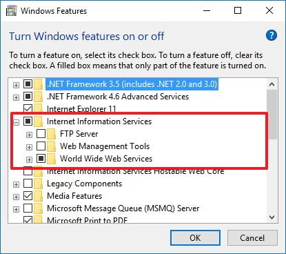 Microsoft IIS - World Wide Web Services