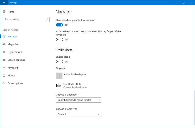 Ease of Access Braille settings