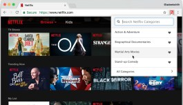 Netflix Categories extension for Chrome