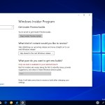 Windows 10 skip ahead option