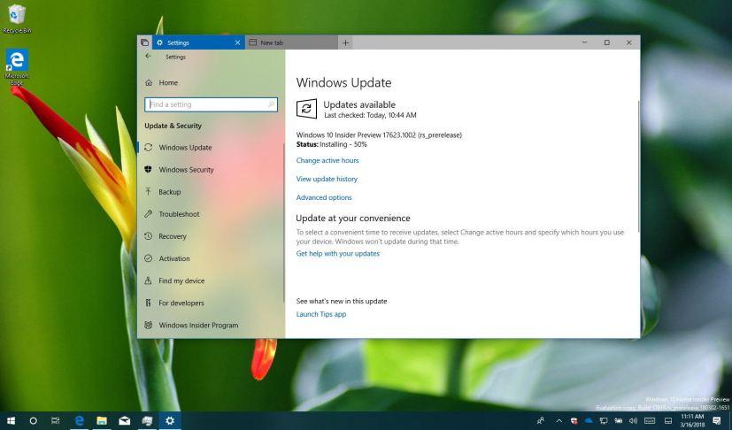 Windows 10 build 17623