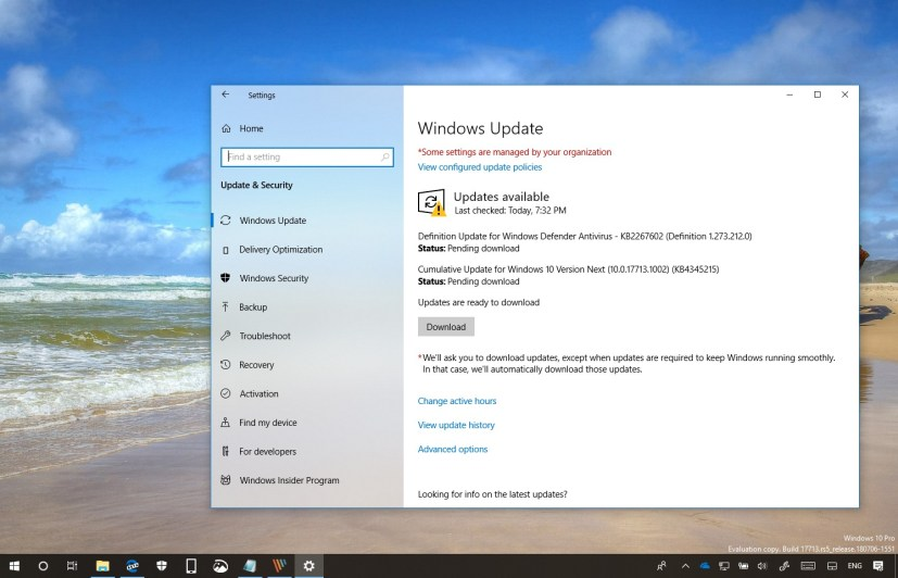 Windows 10 build 17713.1002