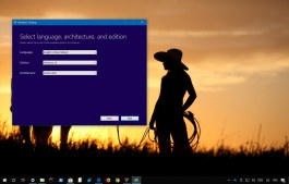 Windows 10 language or edition problem using Media Creation Tool