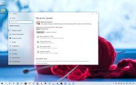 Windows 10 build 18342