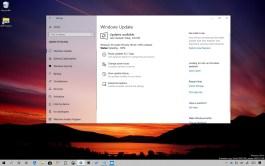 Windows 10 build 18343