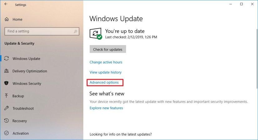 Windows 10 version 1809 update settings