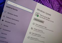 Windows 10 update settings with purple background