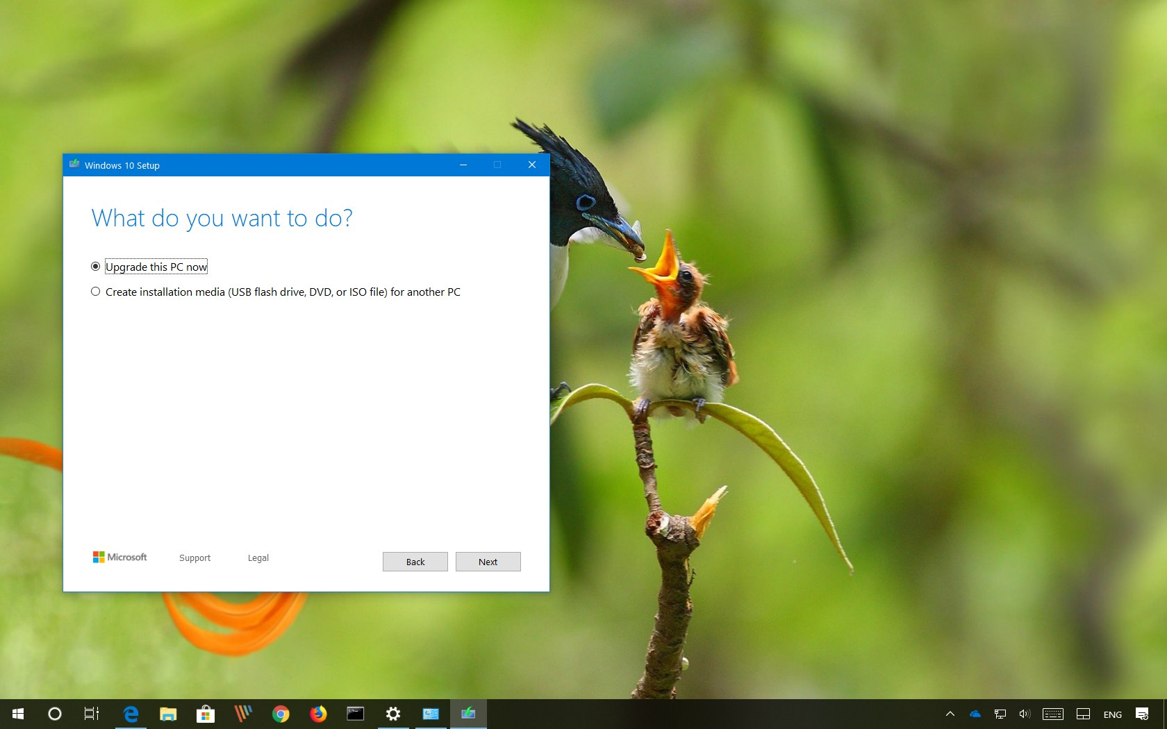 Download Media Creation Tool for Windows 10 version 1903