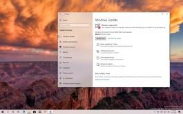 Windows 10 build 18890