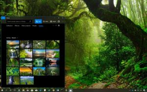 Bing Sunshine theme for Windows 10 (download) • Pureinfotech