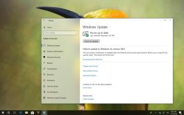 Windows 10 version 1803 to version 1903 auto-update