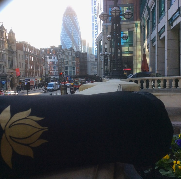 Yogi In The City
