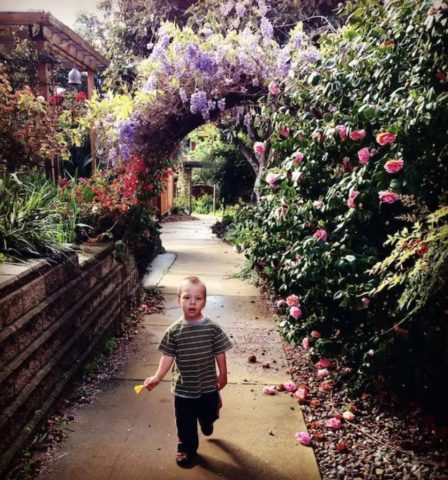 Springtime in the gardens of Terra Nueva