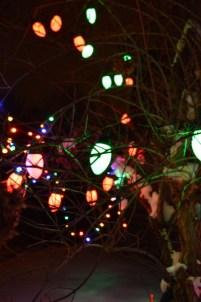 Bulbous LED bulbs