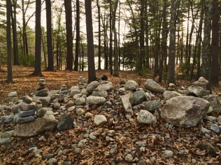 View of Walden Pond from the original site of Thoreau's cabin