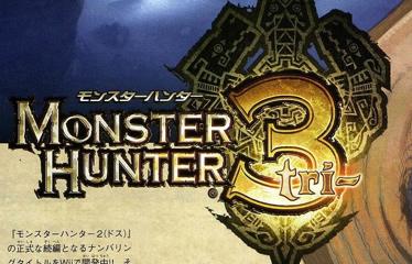 More Monster Hunter 3 Details, 4-player Online Mode!