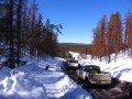 Photo of snowy trail with trucks driving down dirty road