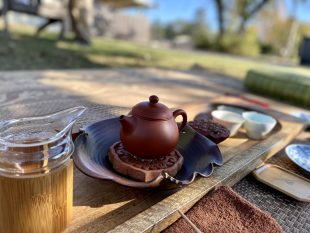 Spontaneous Tea Time with Acupuncturist Viola Huang-Beck