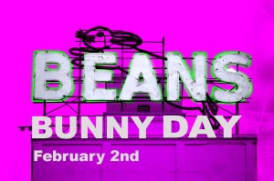 beans bunny day pic