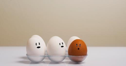 如何攝取蛋白質?每日建議量是多少?怎麼樣算過量?正確的蛋白質吃法大公開!