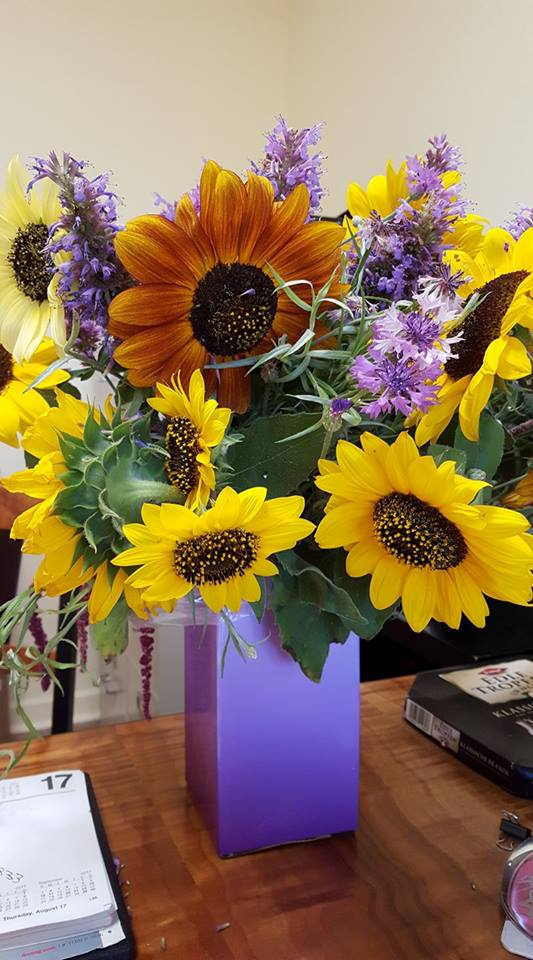 Assortment of Sunflowers