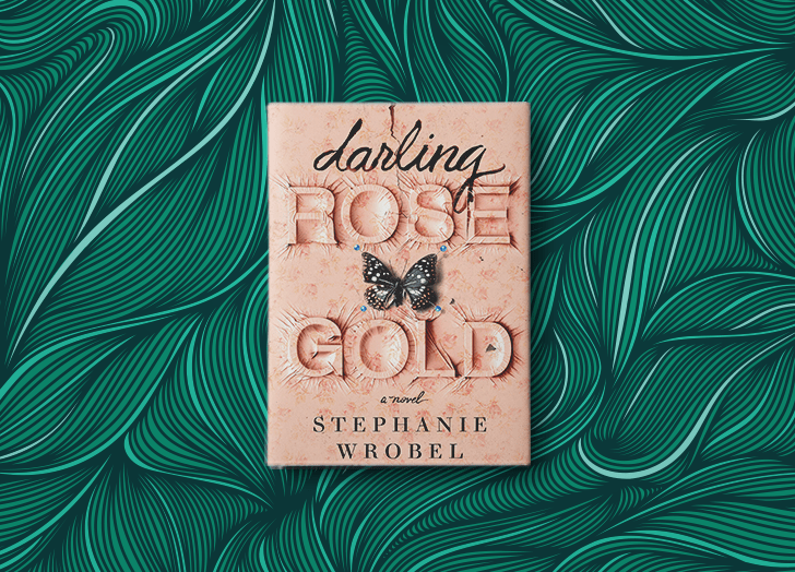 best books of 2020 darling rose gold stephanie wrobel