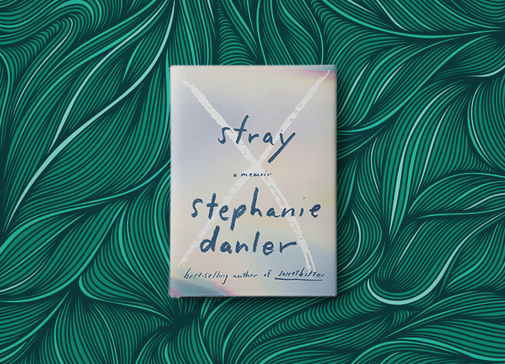 best books of 2020 stray stephanie danler
