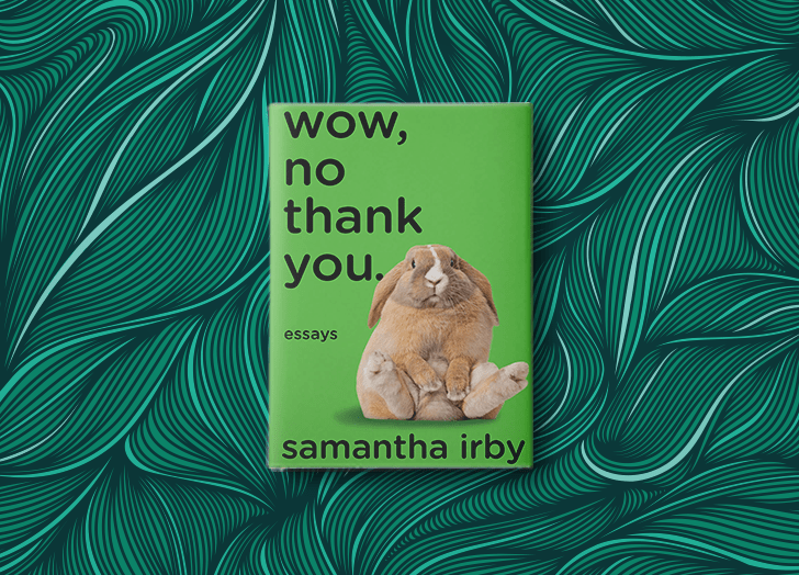 best books of 2020 wow no thank you samantha irby