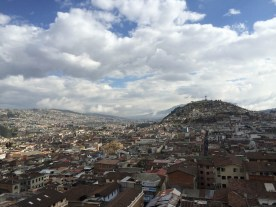 puriy-Quito_Blick-Panecilo