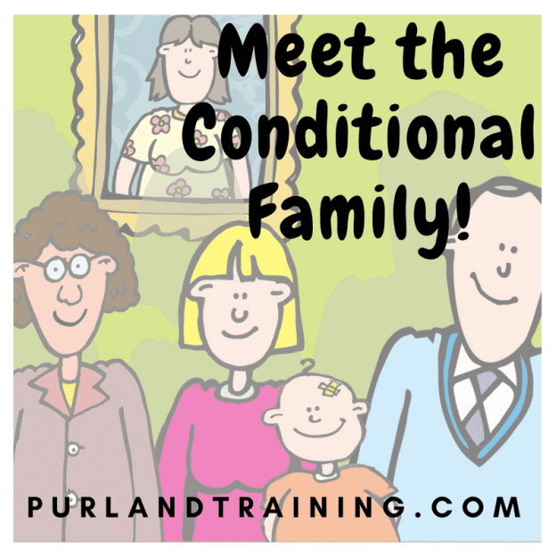Teaching Blog: Meet the Conditional Family