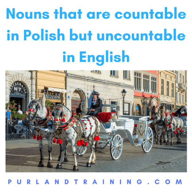 Nouns that are countable in Polish but uncountable in English