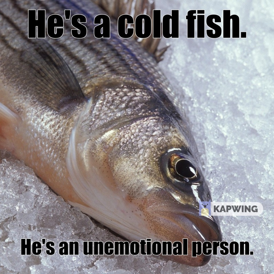 He's a cold fish.