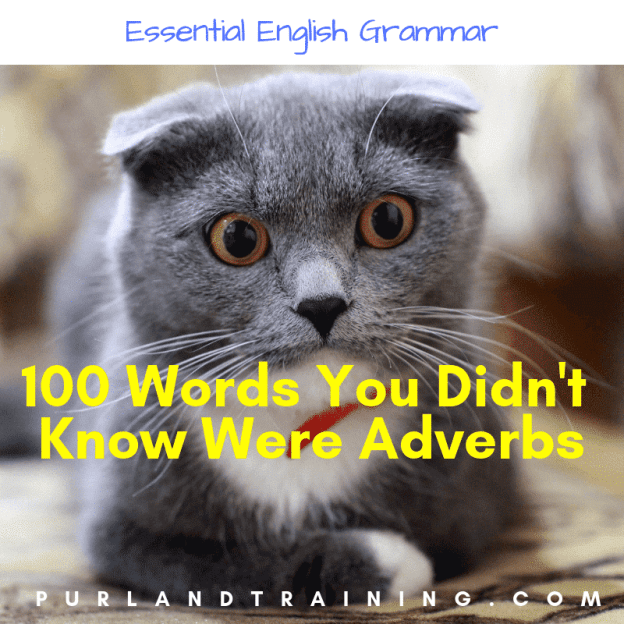 FREE Worksheet: 100 Words You Didn't Know Were Adverbs