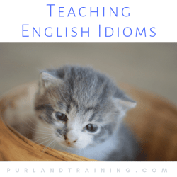 Teaching English Idioms