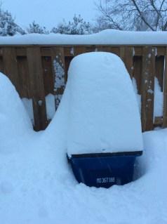 snow_bkyard_recycle