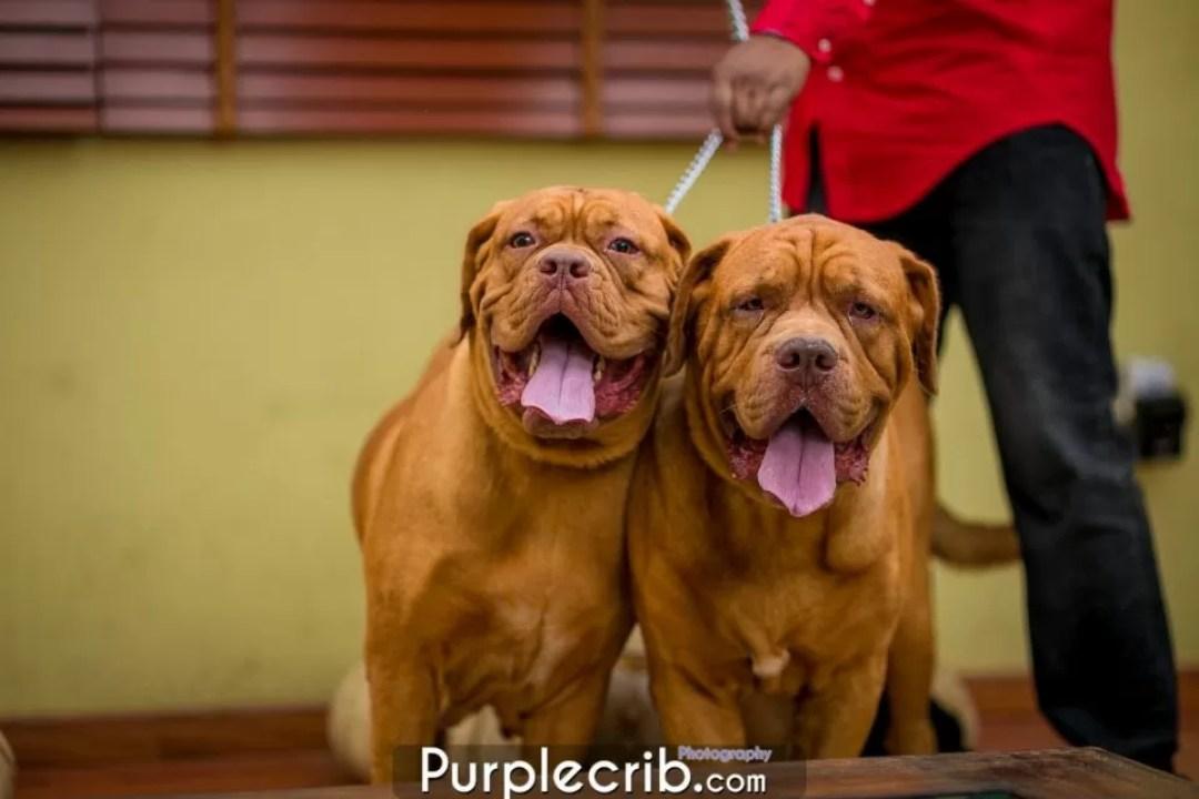Purple Crib Studios www.purplecrib.com #purplecrib #kaykluba #kayodeajayi (18 of 97)