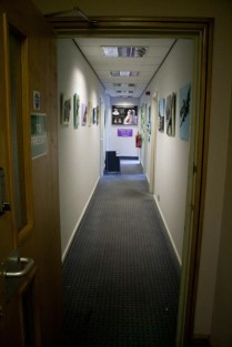 View of some my 3D Acrylic Paintings up in the corridor outside my studio