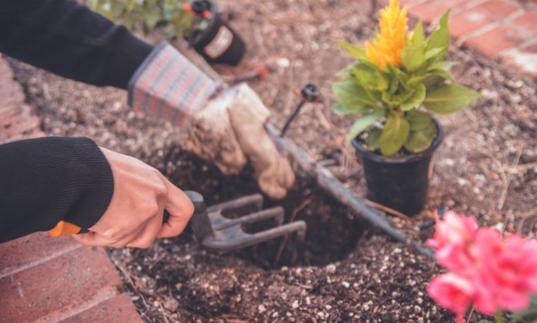 Photo of Garden Hacks That Every Gardener Needs To Know