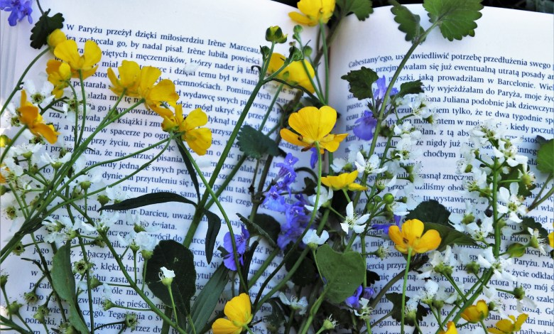 Photo of The Language of Flowers