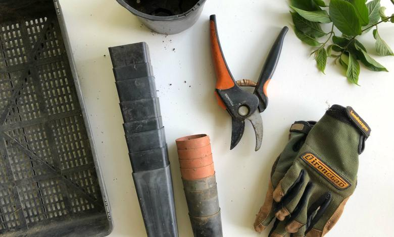 Photo of 20 Most Essential Tips for Garden Maintenance